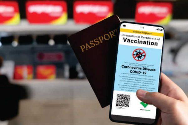 Como emitir o certificado de vacinação contra febre-amarela pela internet CIVP